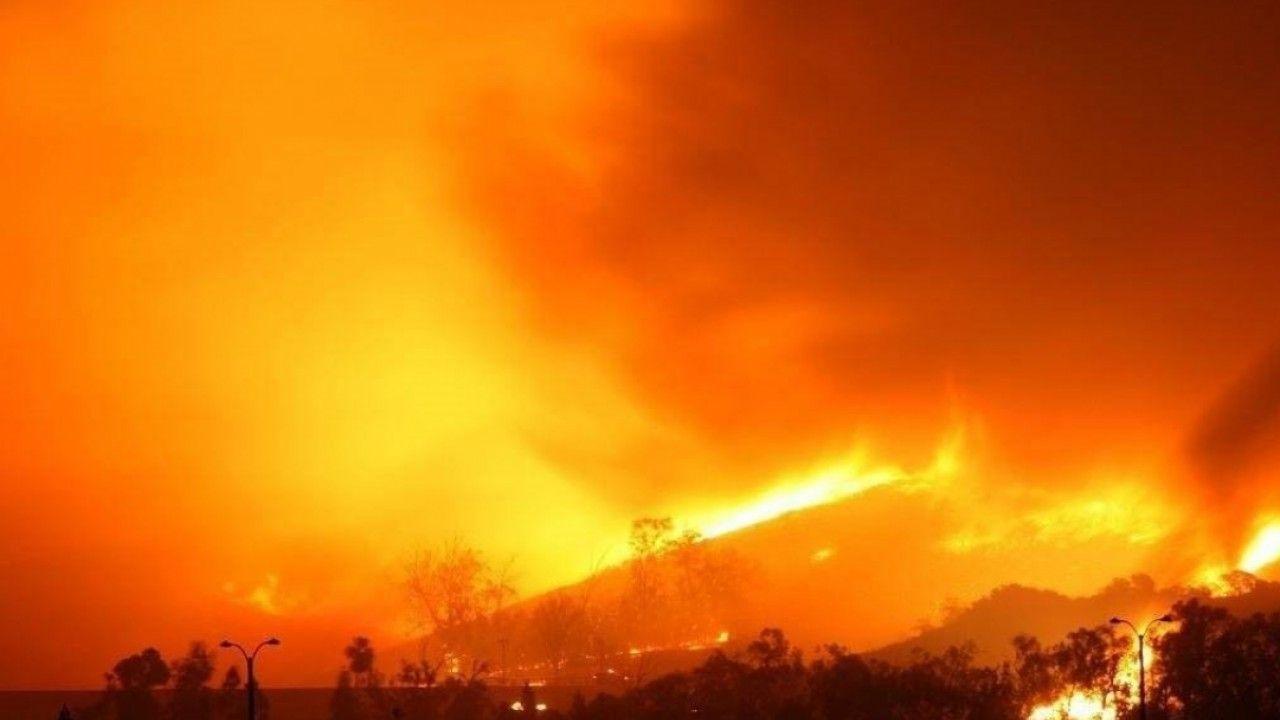 Cháy Rừng Tràm Diện Tích Rộng Thiệt Hại 12 Tỷ Đồng   Hành Trình Bụi