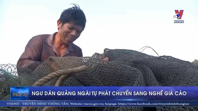 Ngư dân Quảng Ngãi tự phát chuyển sang nghề Giá cào